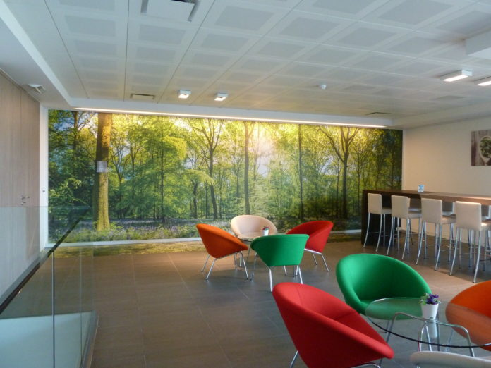Grafityp introduces new wall decoration films.