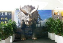 Metropole Creates Full-Size Triceratops with Massivit 3D Printer