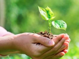 Kyocera Continues Adherence Of Environmental Charter 27 Years Later.